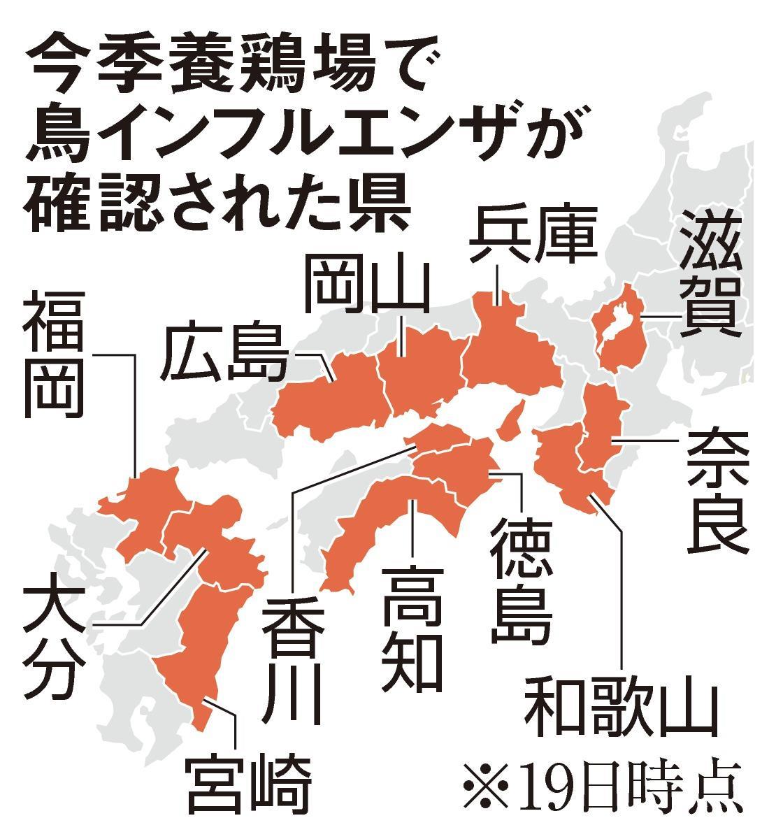 インフルエンザ 日本 鳥