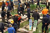 大間産マグロ、2000万円 東京・豊洲で初競り マスク姿で