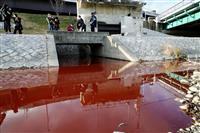 京都・鴨川、赤く染まる、下水道から液体流入