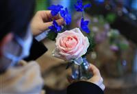 【ちいさなしあわせ おうちで楽しむ】(中)一輪の花 身近に感じる自然や四季