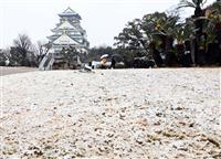 【動画】近畿各地で雪 大阪城公園でも