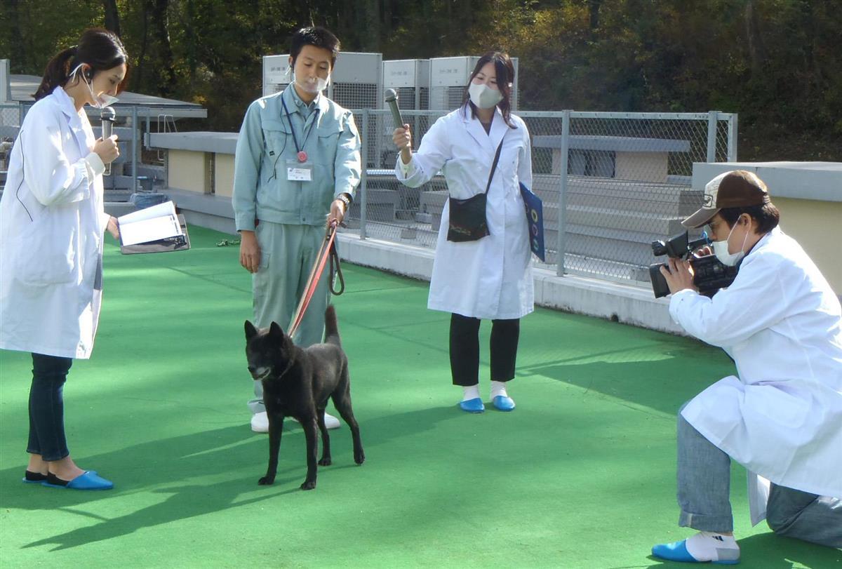 動物 愛護 センター 岐阜 県