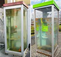 金魚電話ボックス作品は「著作権侵害」と認定 大阪高裁