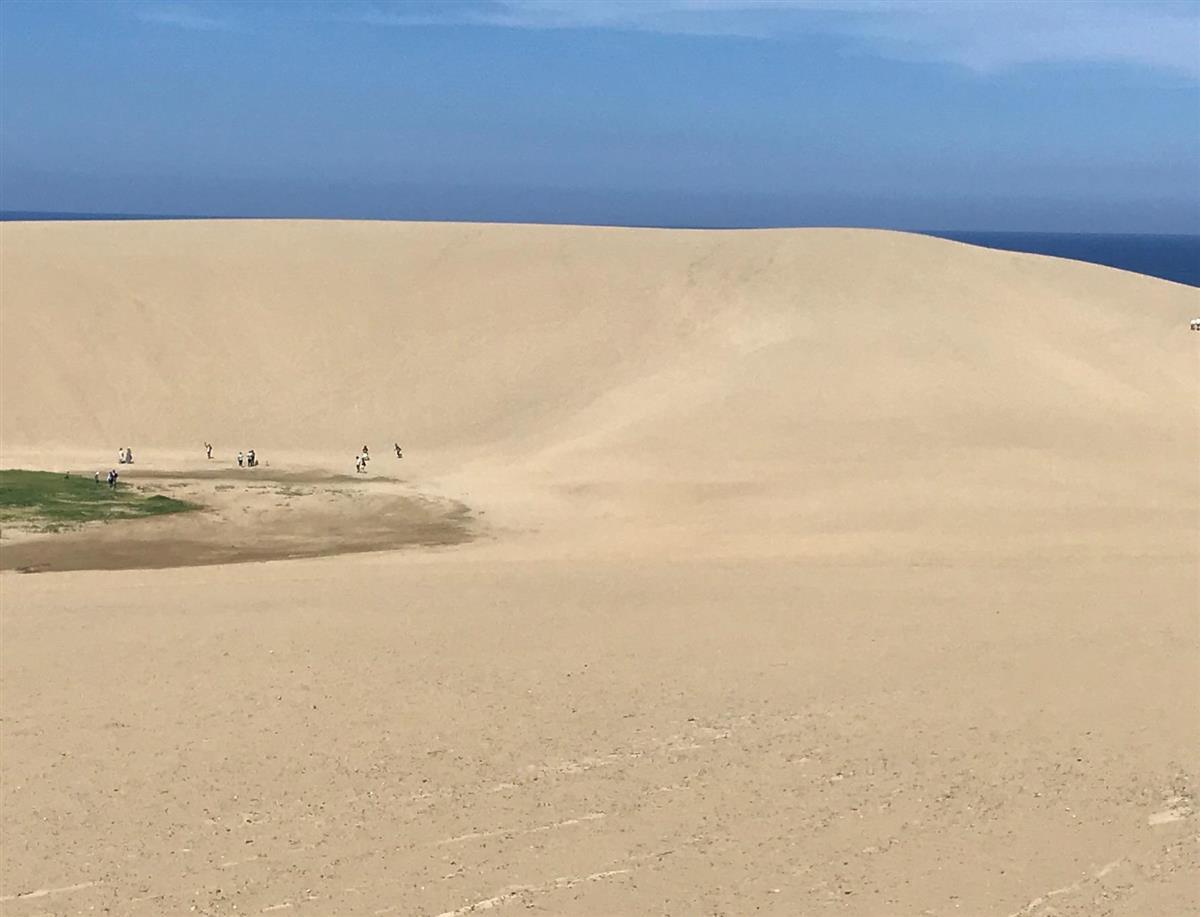 鳥取市の鳥取砂丘