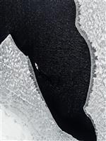 """衣類から流出したマイクロプラスティックで、北極海までもが""""汚染""""されつつある:研究結果"""