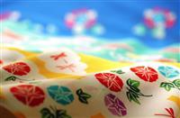 伝統産業「堺ブランド」確立目指す 外部デザイナーとのコラボに期待
