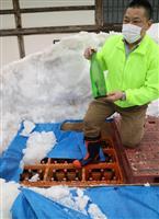 雪中貯蔵の蔵出し酒 山形・東根市の六歌仙