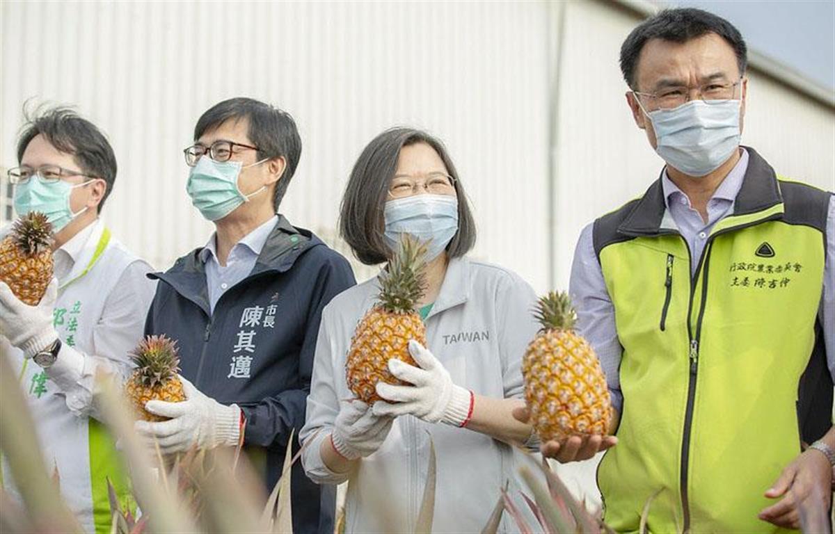 2月28日、台湾南部高雄市のパイナップル農園を視察した蔡英文総統(右から2人目)(総統府提供・共同)