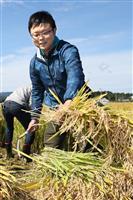 【農家の10年 東日本大震災】縁と「おいしい」の言葉に支えられ 南相馬市のコメ農家、豊…