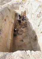 シルクロードの「王の食卓」浮かぶ 食料庫を発掘
