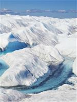 光合成で増殖するバクテリアが、氷河の融解を加速する:研究結果