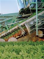 農業の『未来創世記』:気候変動アクティビストのための、遺伝子とオーガニック再考