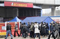 WHO調査団が武漢報告書 中間宿主介した感染「可能性高い」 研究所流出は否定