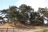 侍塚古墳を栃木県が初の本格調査 周溝など全体像確認 国史跡追加指定も