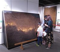 震災振り返る地層の標本 熊本博物館で熊本地震の企画展
