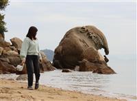 まるでゾウ SNS映えする奇岩の人気は江戸時代から