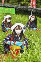 京都・宇治で「八十八夜」の茶摘み 例年より新芽の生育早く