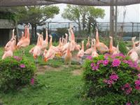 五感を通じて動物との触れ合いを 茨城県日立市かみね動物園