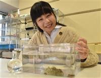 【動画】女子大院生のウミウシ愛 切断頭部だけで再生する生態発見