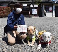 盲導犬とコラボ 点字付き御朱印誕生 宇都宮の神社