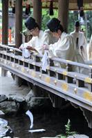 葵祭の前儀「御禊の儀」 京都・上賀茂神社