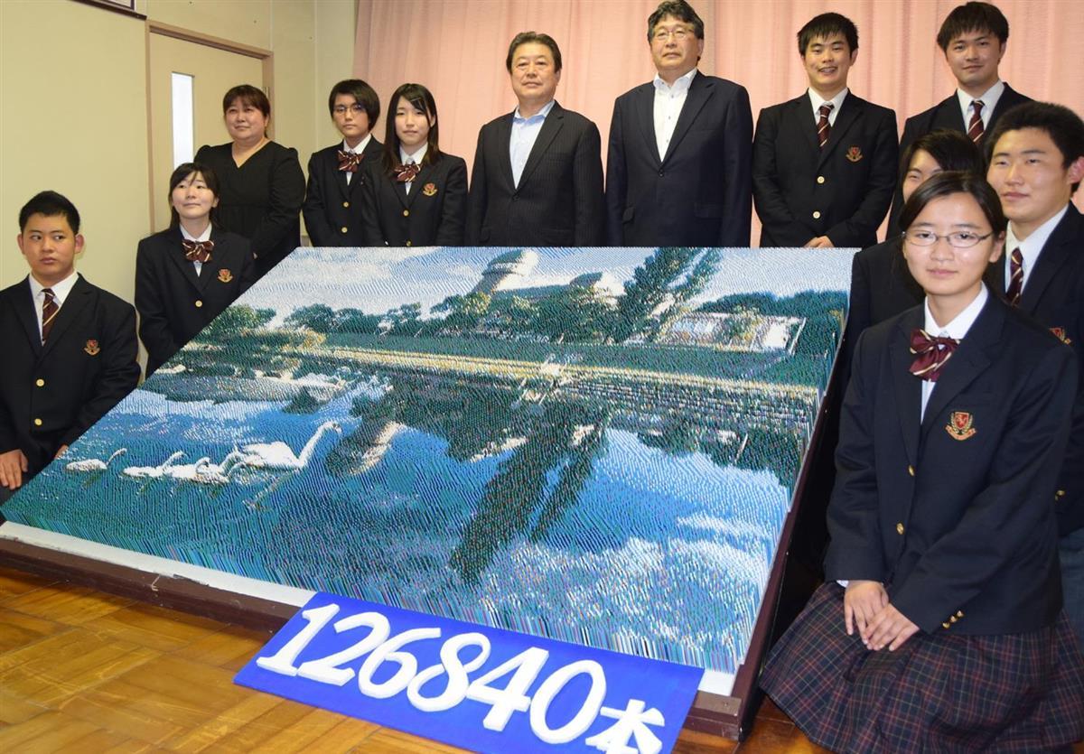 12万6840本で「つまようじアート」 千葉の高校生