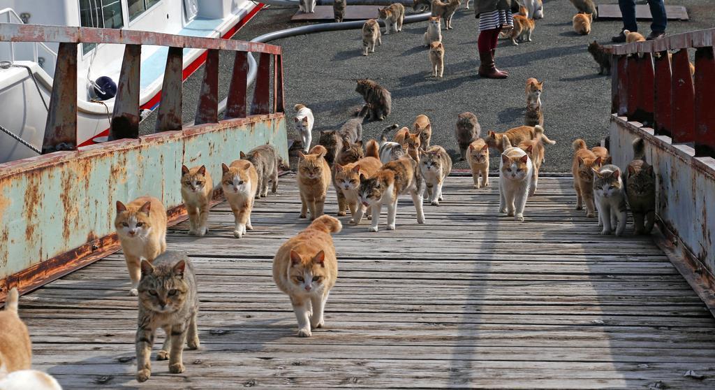 自然に見えるパンチラ総合スレ  Part.4 [転載禁止]©bbspink.com->画像>3795枚