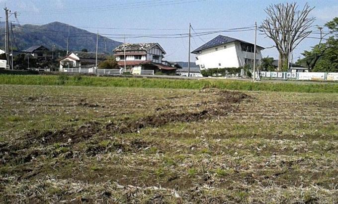 阿蘇カルデラ内で断層確認 熊本M...