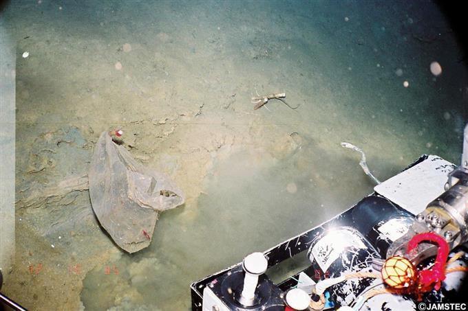 産経フォト深海1万メートルにプラごみ汚染 使い捨て製品、生態系懸念サイトナビゲーション深海1万メートルにプラごみ汚染 使い捨て製品、生態系懸念PRPRスゴい!もっと見る瞬間ランキングもっと見るPRPRRICOH THETAが記憶する景色PRPR産経スペシャル今週のトピックス話題のランキング