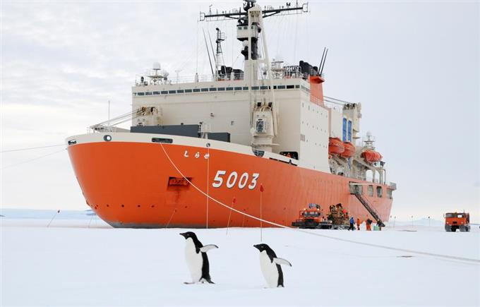 観測 隊 南極
