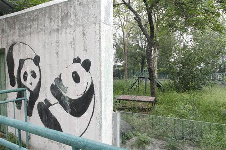 【世界ミニナビ】中国人、マナーの話題は国内でも尽きず…はしごで動物園IN、地元住民は闇入園料ゲット