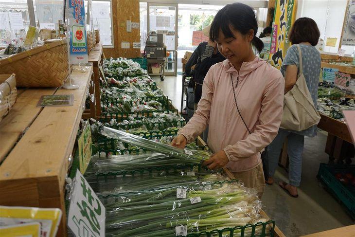 農業女子が支援組織設立 農地や販売先の確保の助けに