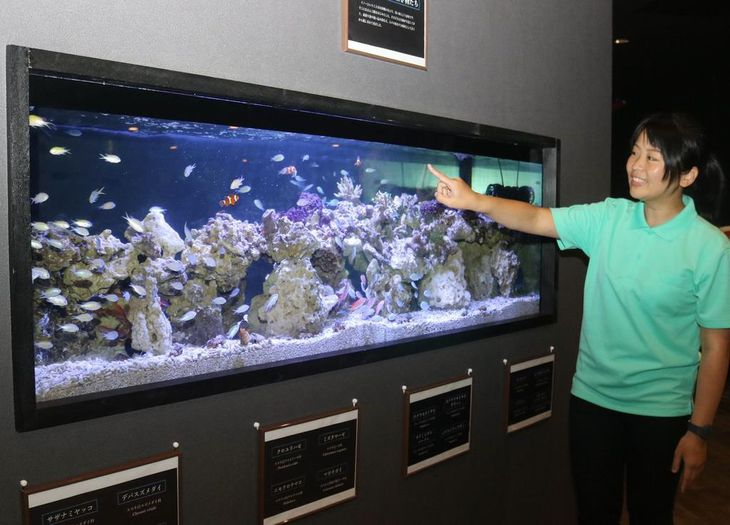 学習型水族館オープン 神戸の専門学校