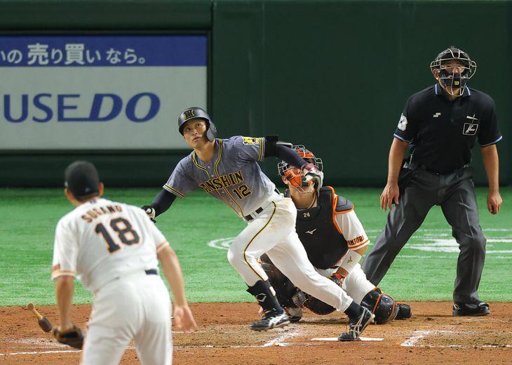 【巨人ー阪神】四回、本塁打を放つ阪神の坂本=10月13日、東京ドーム(桐原正道撮影)