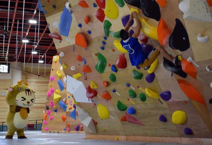 本格的なクライミングを楽しむことができる高さ約4・5メートルの壁(クライミングパーク神怡舘提供)