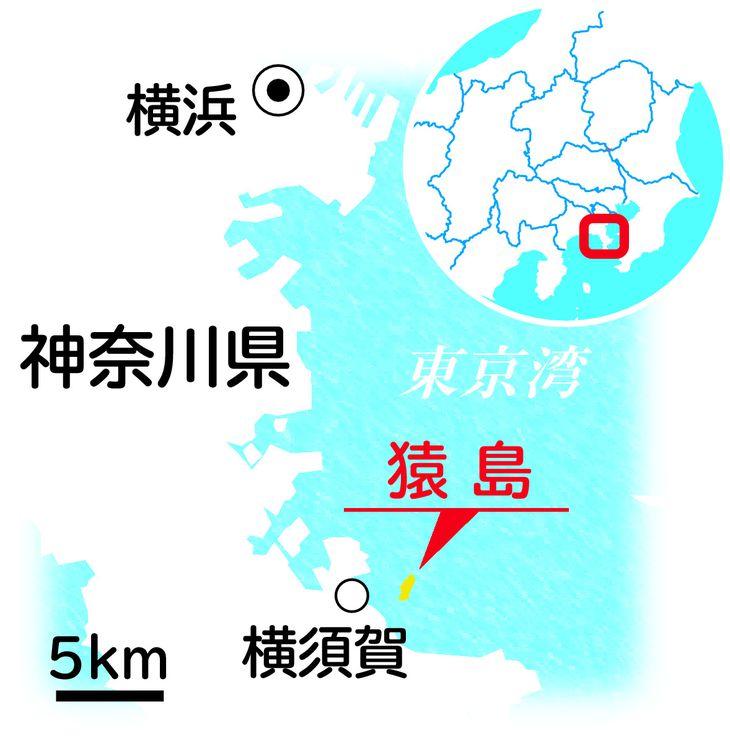 本M猿島(島を歩くカラー