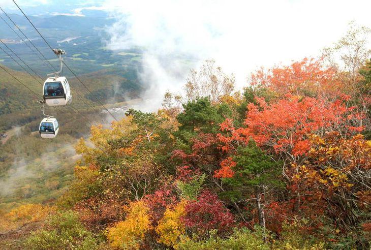 【台風19号】遅い紅葉、観光客は半減 福島・安達太良山