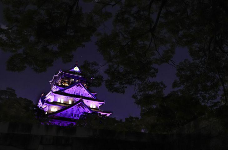 紫色にライトアップされた大阪城=9日夜