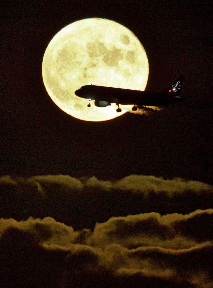 【中秋の名月2021】明るく輝く月の前を飛行機が横切った=21日午後、川崎市川崎区東扇島(原田史郎撮影)